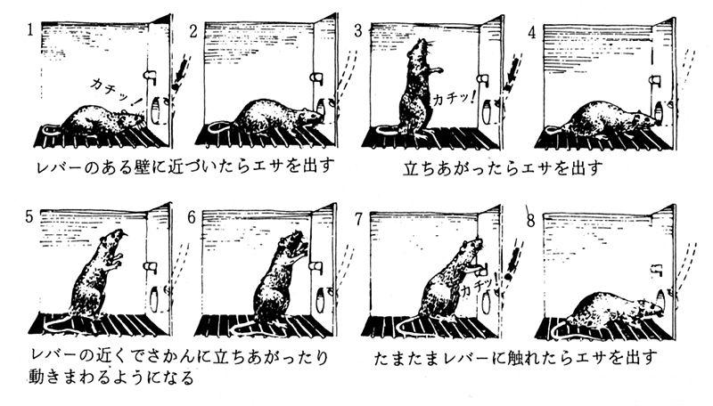 ファイル:Sakurai fig 1.jpg